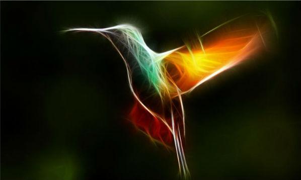 O verdadeiro significado espiritual do beija-flor, o que ninguém lhe Disse